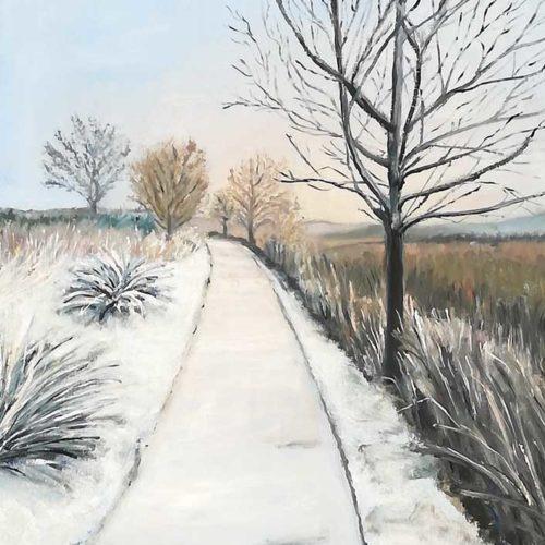 paisajes (12)