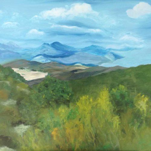 paisajes (19)